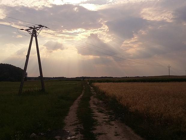 Tereny idealne dla rowerzystów w Miliczu i okolicy