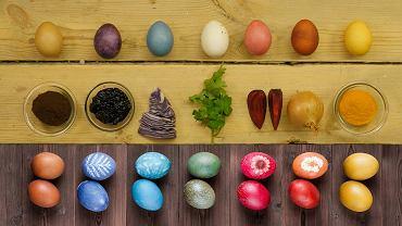 Naturalne farbowanie jajek - internet vs. rzeczywistość