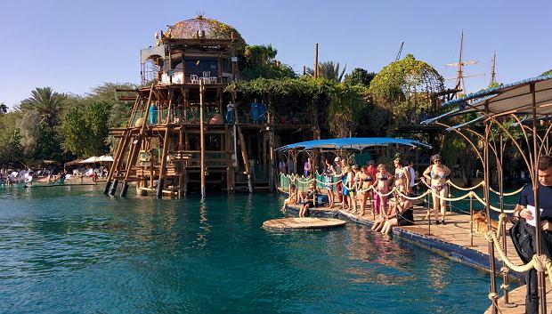 Czekając na delfiny można spędzić czas w barze nad wodą