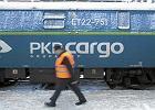 """PKP Cargo atakuje Europę: kupuje giganta z Czech. Za 445 mln zł. """"Historyczny moment"""""""