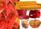 Kolory jesieni we wnętrzach - zobacz dekoracje, które ożywią mieszkanie