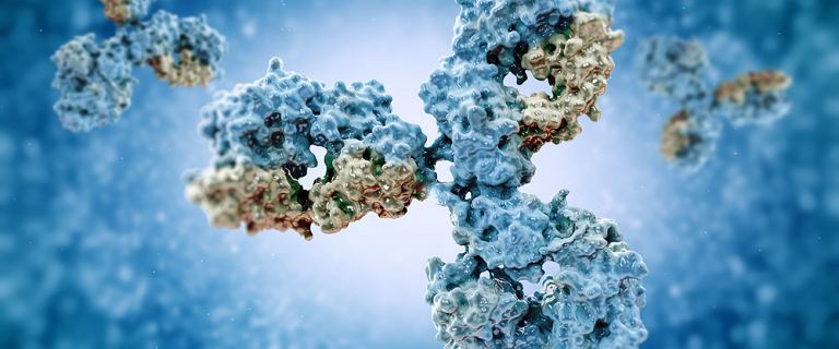 Osoby, które przechodzą COVID-19 bezobjawowo szybciej tracą przeciwciała