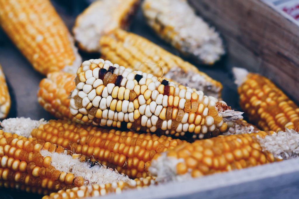 ile kalorii ma kukurydza?