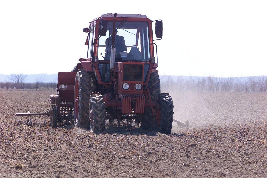 Traktor (zdjęcie ilustracyjne)