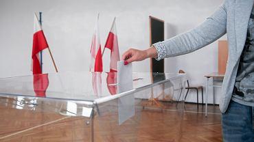 Wybory do Parlamentu Europejskiego. W USA Polonia wybierała PiS
