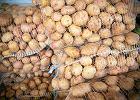 Czy można przeżyć, jedząc tylko ziemniaki? Australijczyk odstawił inne produkty na rok