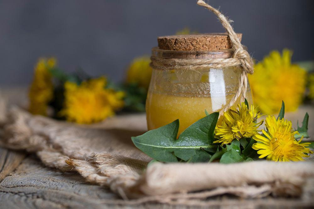 Mniszek lekarski doskonale nadaje się na syrop lub miód. Może być także stosowany do sałatek, zup i koktajli.