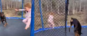"""Dziewczynka i pies skaczą na trampolinie. Nagle... zaczęli robić salta. """"Każdy powinien to zobaczyć"""""""