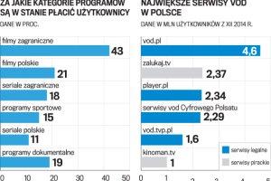 Trudny start Netfliksa w Polsce. Czy opłaca się wykupić abonament?