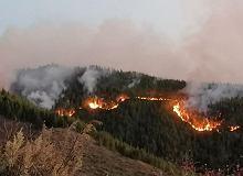 Pożar na Gran Canari, płoną lasy. Ewakuowano blisko dwa tysiące osób