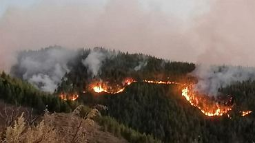Pożary na Gran Canarii - 11 sierpnia 2019 roku