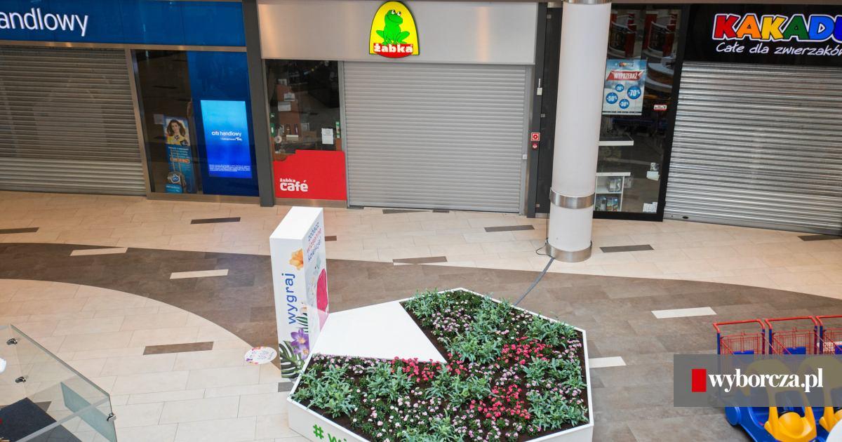 a4b0081d19 Otwarte sklepy w Krakowie 12 listopada - gdzie zrobimy zakupy