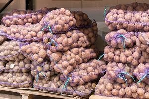 Biedronka nie będzie importować brytyjskich ziemniaków. Powód? Brexit