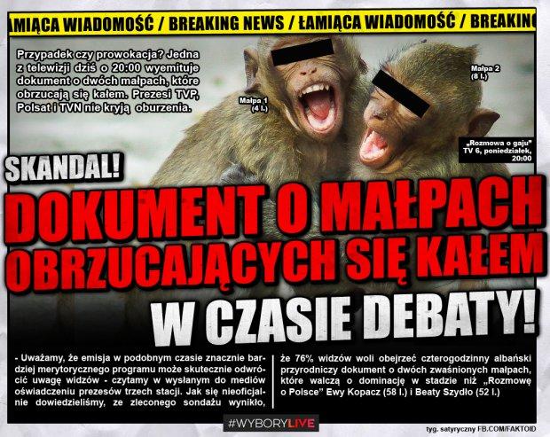 Dokument o małpach zakłóci debatę? [Faktoid] - - Uważamy, że emisja w podobnym czasie znacznie bardziej merytorycznego programu może skutecznie odwrócić uwagę widzów - czytamy w wysłanym do mediów oświadczeniu prezesów trzech stacji. Jak się nieoficjalnie dowiedzieliśmy, ze zleconego sondażu wynikło, że 76% widzów woli obejrzeć czterogodzinny albański przyrodniczy dokument o dwóch zwaśnionych małpach, które walczą o dominację w stadzie niż ?Rozmowę o Polsce? Ewy Kopacz (58 l.) i Beaty Szydło (52 l.)   - Faktoid