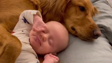 Mama uchwyciła niezwykłą przyjaźń psa z dzieckiem