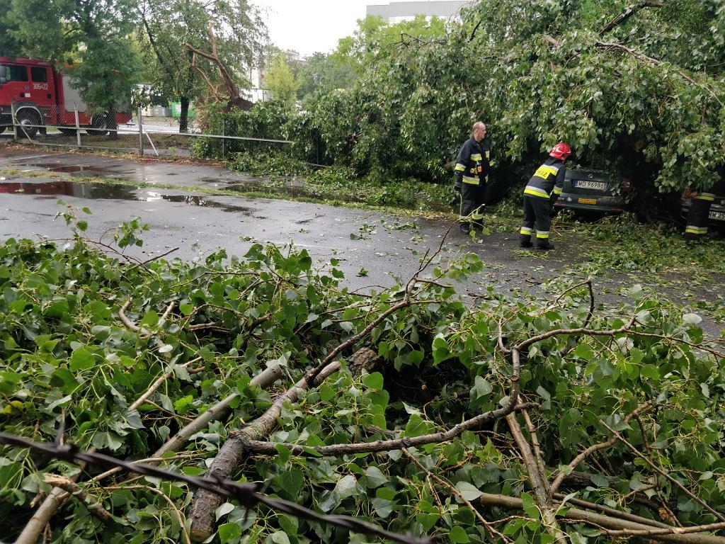 Usuwanie szkód po nawałnicy przy ul. Broniewskiego na Bielanach