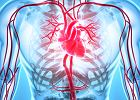 Choroby sercowo-naczyniowe, czyli prawdziwa plaga XXI wieku