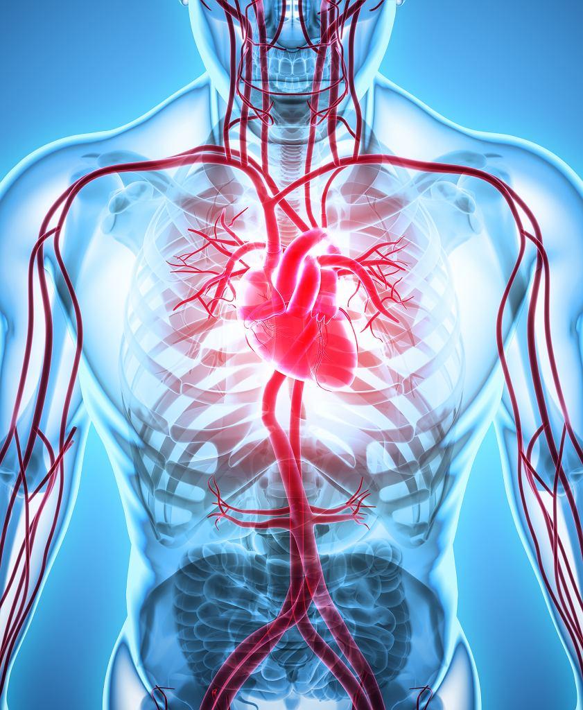 Choroby sercowo-naczyniowe związane są z układem krążenia.