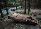 Wandal zdewastował pomnik Pamięci o Zagładzie Romów w Borzęcinie Dolnym