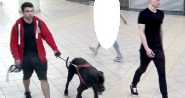 Praga-Północ. Policja szuka sprawców pobicia na przystanku. Publikuje zdjęcia napastników i ich psa