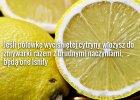 19 sposobów na wykorzystanie cytryny