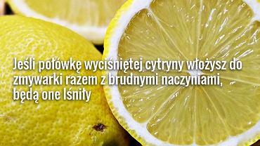 Cytryna ma wiele zastosowań!