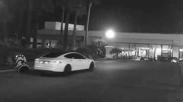 Samochód Tesla jadąc na autopilocie potrącił autonomicznego robota