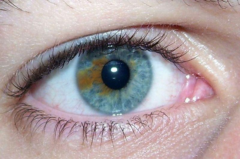 Kolor oczu a podatność na alkoholizm