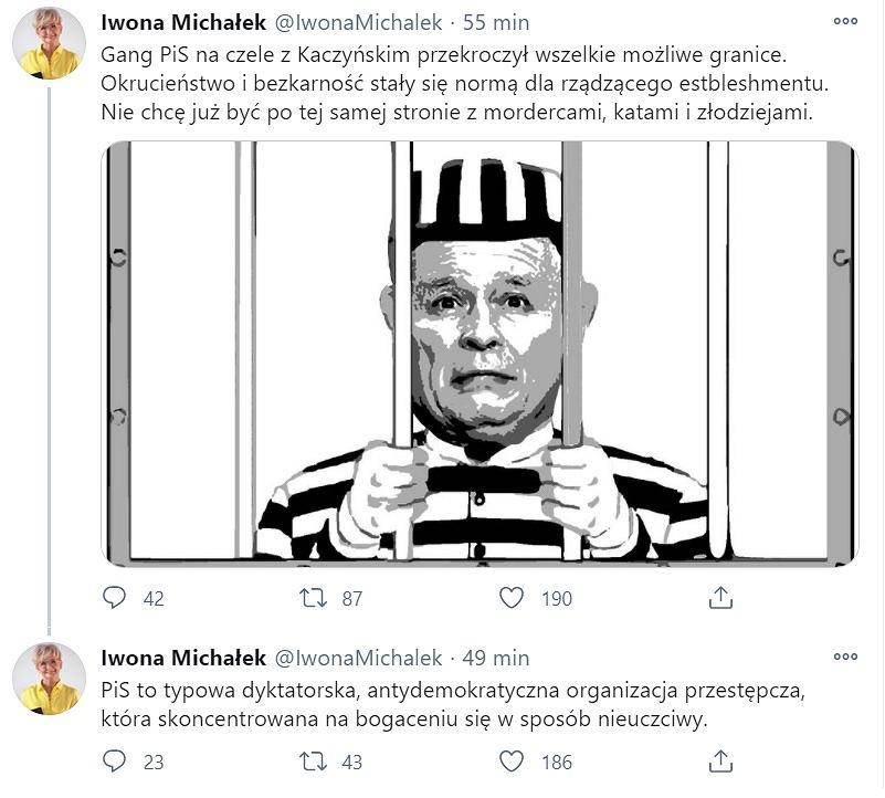 Wpisy na profilu wiceminister rozwoju Iwony Michałek na Twitterze.