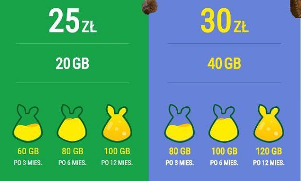 Plush - internet mobilny z krótką umową