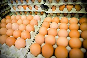 Tańsze jajka znikają z polskich sklepów. Nie kupisz ich m.in. w ABC, Groszku i Delikatesach Centrum. Od kiedy?