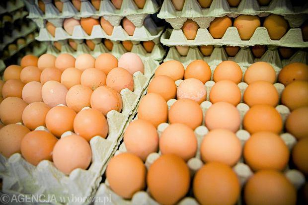 Wielkanoc tuż tuż. Ile kosztuje jajko i dlaczego tak (nie)drogo?