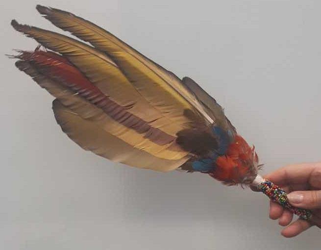 Zatrzymany przedmiot. Wachlarz z piór papugi