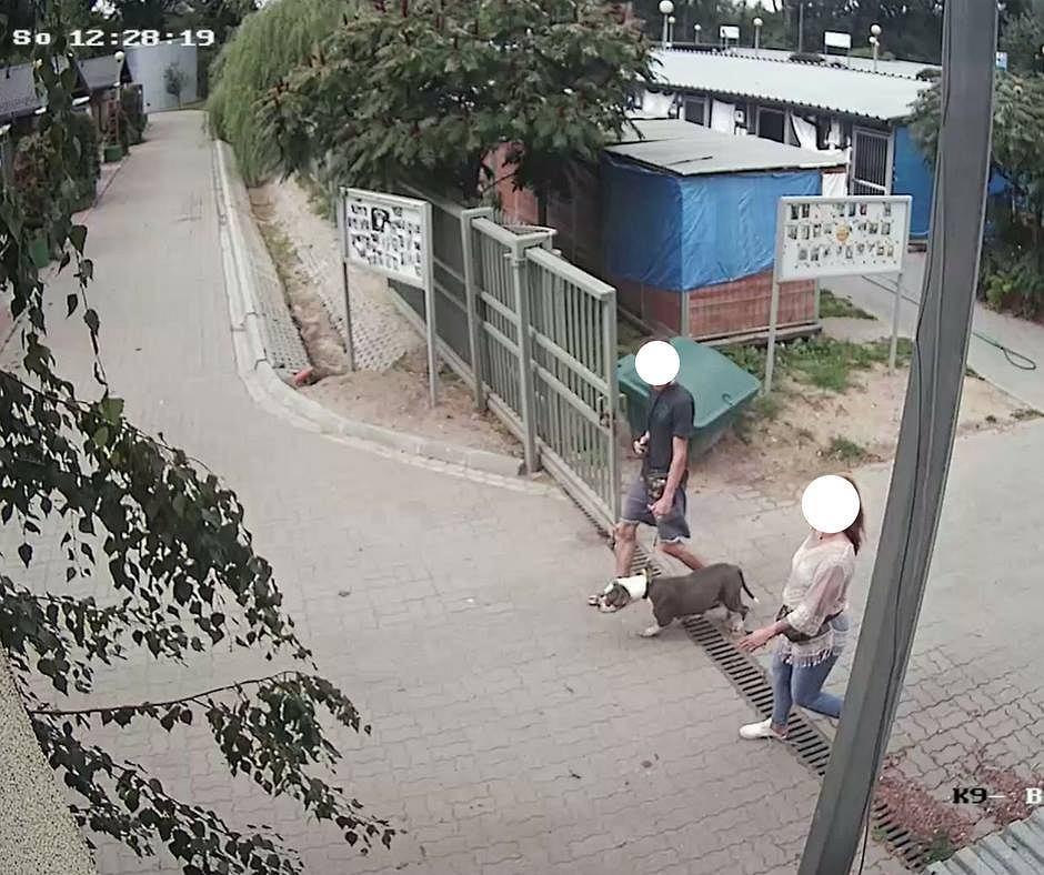 Osoby wyprowadzające psa na zdjęciu z monitoringu