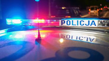 Radiowóz policyjny (zdjęcie ilustracyjne)