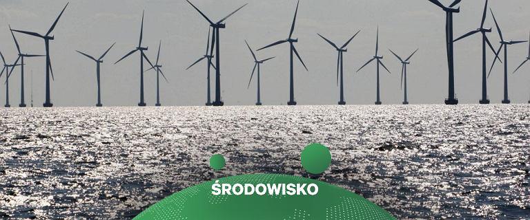 PKN Orlen. Mimo opóźnień, budowa farmy wiatrowej na Bałtyku ruszy w 2024 r.