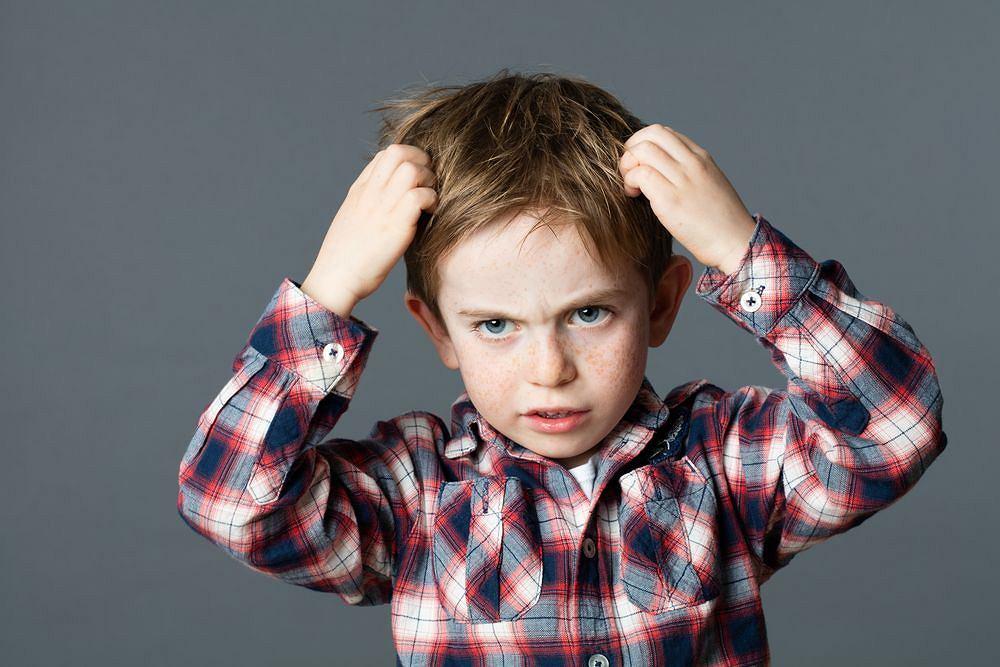 'Uwaga, panuje wszawica' - takie ogłoszenia często pojawiają się w przedszkolach i szkołach.