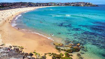 Sydney - Bondi beach / shutterstock