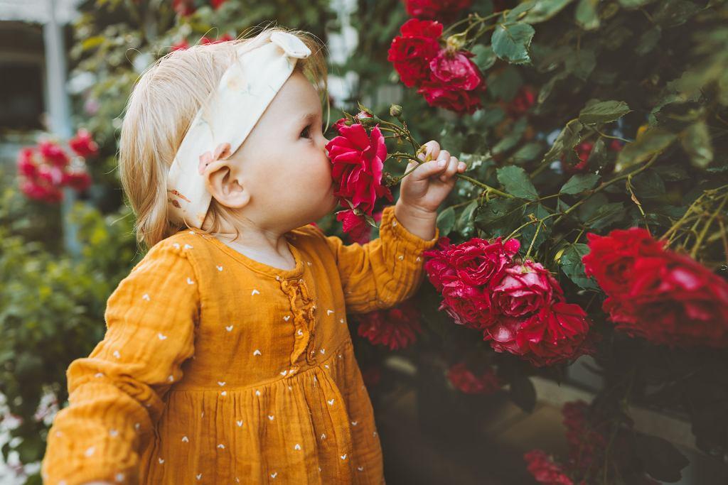 dziecko w ogrodzie (zdjęcie ilustracyjne)