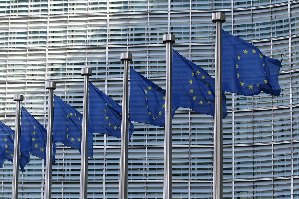 Flagi Unii Europejskiej (zdjęcie ilustracyjne)