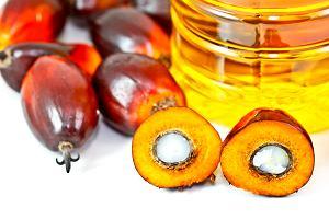 Olej palmowy - tak bardzo popularny, a jednocześnie tak szkodliwy. Czy da się go uniknąć?