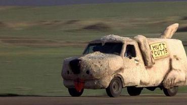 Głupi i głupszy - samochód w psim ubranku