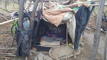 63-latek mieszkał w lesie w prowizorycznym szałasie