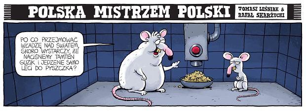 Zdjęcie numer 18 w galerii - Polska mistrzem Polski