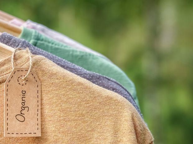 Bawełna organiczna - co to jest i czemu warto kupować ubrania z tego materiału?