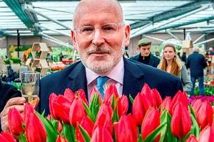 Partia Timmermansa niespodziewanie wygrywa eurowybory w Holandii