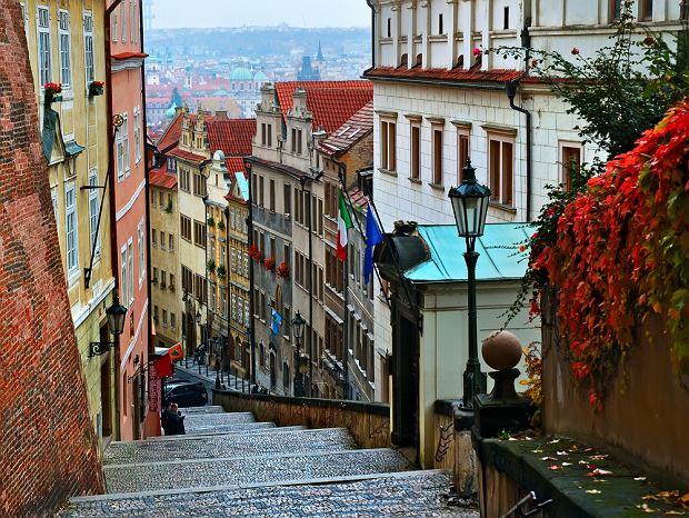 Czechy Praga / shutterstock