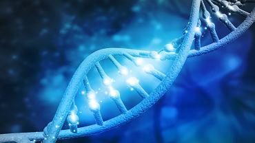 Mukopolisacharydoza jest wrodzoną, uwarunkowaną genetycznie chorobą metaboliczną, która jest bardzo rzadka i trudna w diagnostyce.
