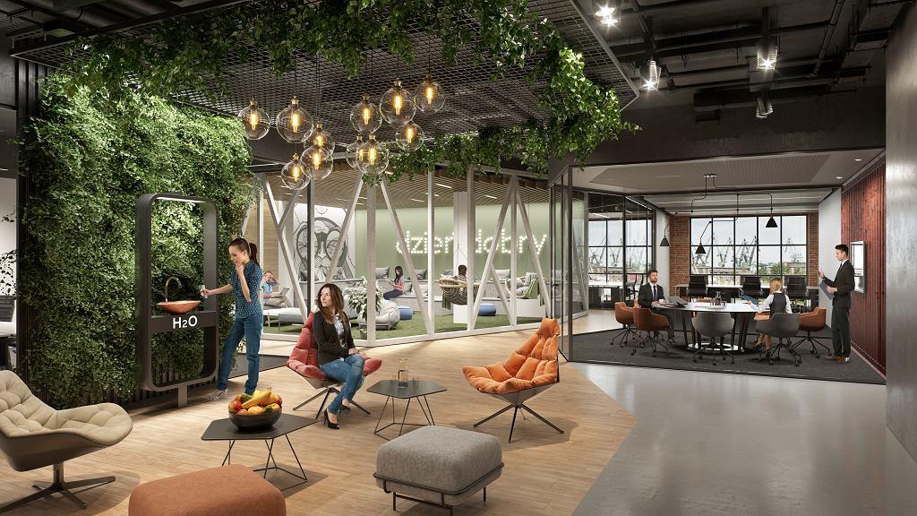 DOKI Office - wizualizacja wnętrza biura