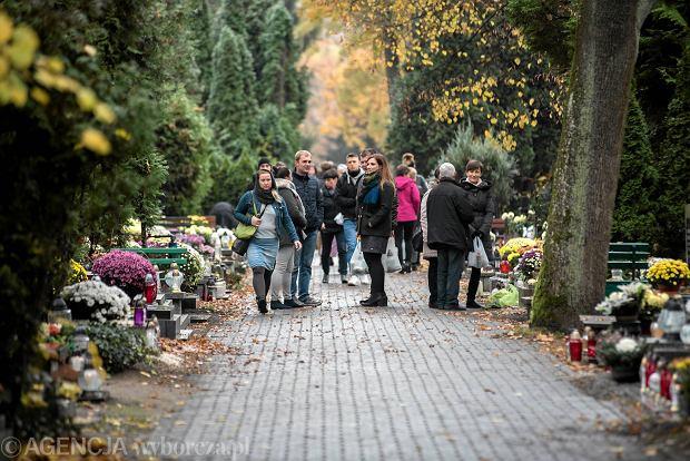 Zdjęcie numer 37 w galerii - Wszystkich Świętych we Wrocławiu. Cmentarze w kwiatach [ZDJĘCIA]